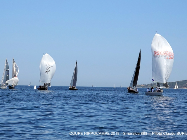 Photographe Claude Burillon : COUPE HIPPOCAMPE Avril 2018 ST TROPEZ